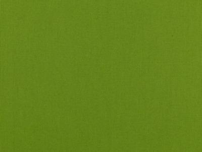 05m Canvas Uni hellgrün 012 Auch