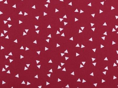 05m BW Triangle by poppy Fliegende