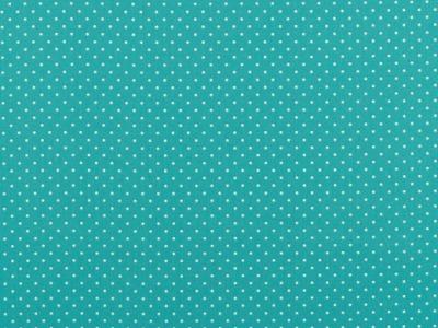 05m BW türkis Minipunkte Petit Dots