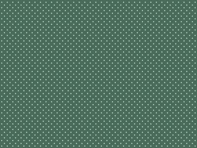 05m BW jade Minipunkte Petit Dots