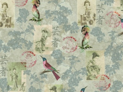 05m Canvas Vögel Japan Gheisha Digitaldruck