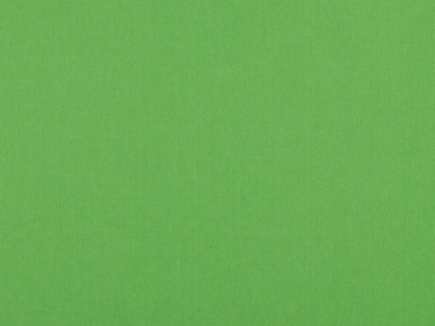 05m Baumwolle Uni hellgrün Auch in