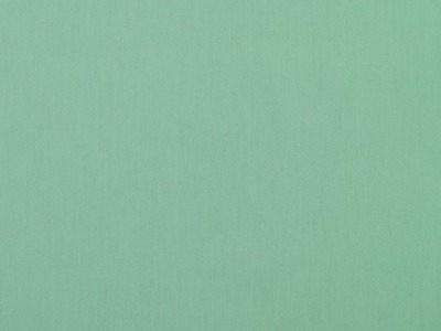 05m Baumwolle Uni peppermint Auch in