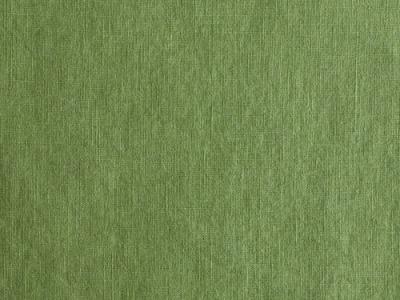 05m Leinen hellgrün