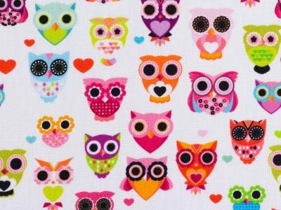 05m BW Kim Eulen Owl weiß