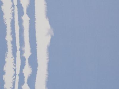 05m Viskose Lexi Batik Streifen Bordüre