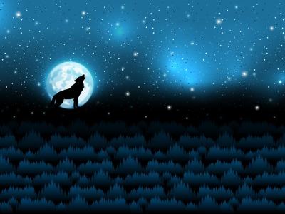 1Panel Sweat unangeraut Wolf Moon by