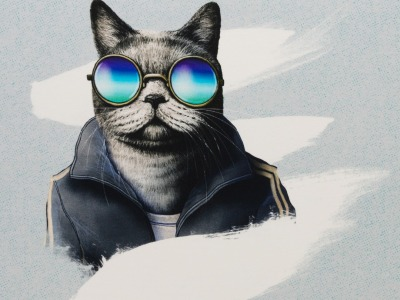 1Panel Sweat French Terry Sporty Cat