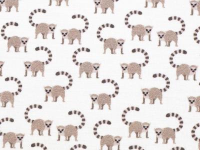 05m BW Toni Lemuren weiß braun