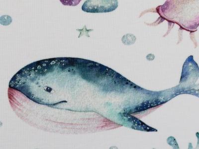 05m Jersey Bern Aquarell Wal Qualle