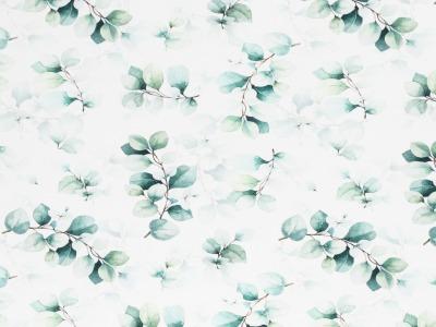 05m Jersey Eukalyptus weiß grün