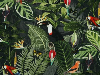 05m Canvas Digitaldruck in den Tropen