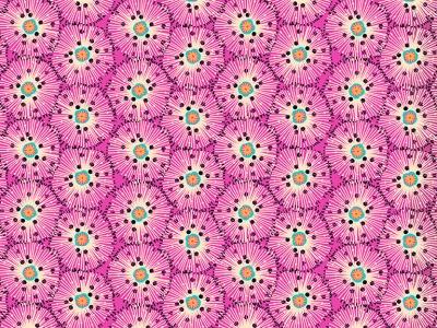 05m BW Urchin Pink pink schwarz