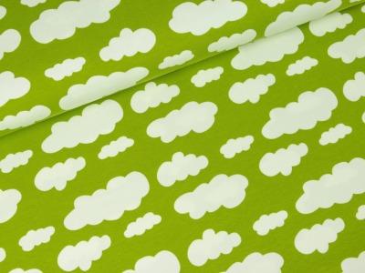 05m Jersey Vicente Wolke hellgrün weiß