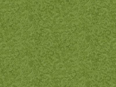 05m BW Emerald Isle Grass Wiese