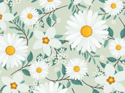 05m Jersey Margeriten Gänseblümchen Blumen ecru