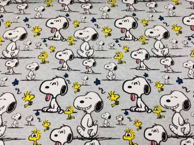 05m Jersey Snoopy Faces Peanuts hellgrau