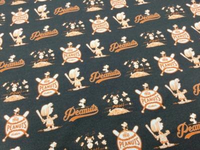 05m Jersey Snoopy Peanuts Vintage grau