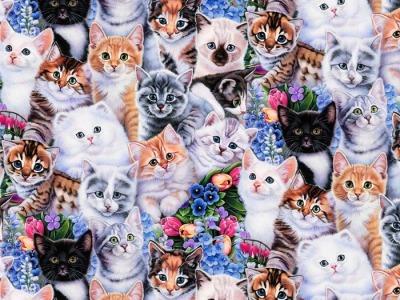 05m BW Kitten and Flowers Katzen