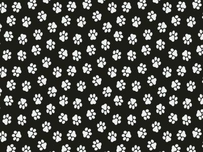 05m Baumwolle Pfoten Pfötchen schwarz weiß