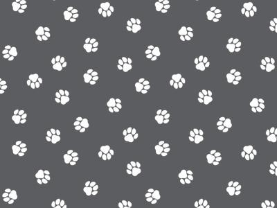 05m BW Balu Pfoten dunkelgrau weiß