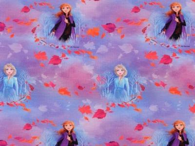 05m Jersey Frozen Elsa und Anna
