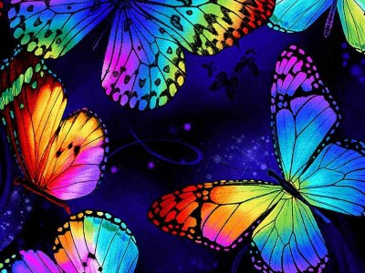 025m Baumwolle Timeless Treasures Multi Butterfly