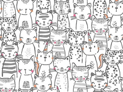 025m BW Michael Miller Meowgical Pawsome