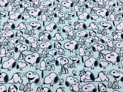 05m Jersey Snoopy Happyness Peanuts mint