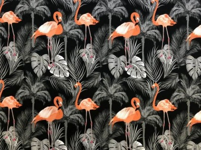 05m Jersey Luke Flamingo Philodendron Palme