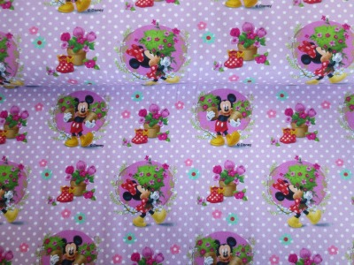 05m Jersey Mickey und Minnie Mouse