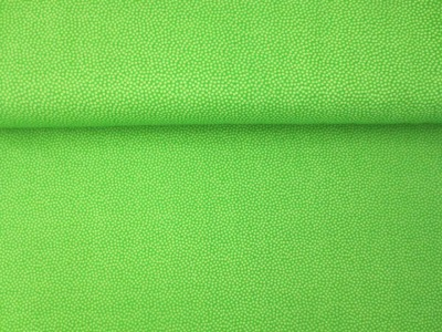05m BW hellgrün Microdots Punkte Auch