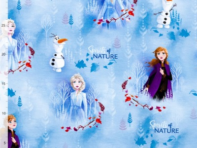 05m Jersey Frozen Elsa Anna Olaf