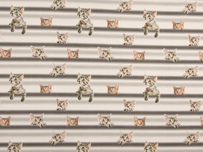 05m Jersey Dinos Digitaldruck Katzen Cats