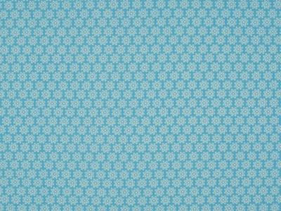 05m BW hellblau Daisy Kleine Blumen