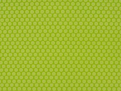 05m BW hellgrün Daisy Kleine Blumen