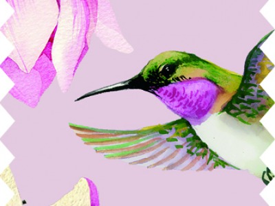 05m BW Light Breeze Magnolie Kolibri