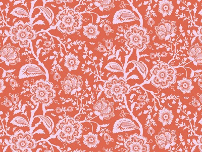 05m BW Tula Pink Pinkervill Delight