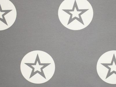 05m Sweat French Terry Big Star