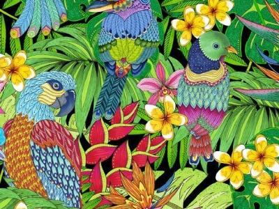 025m Baumwolle Wilmington Tropical Flair Vögel