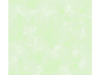 05m BW Patchworkstoff grün marmoriert Auch