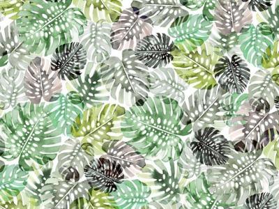 Jersey Blätter Monstera - Baumwolljersey Damenestoff