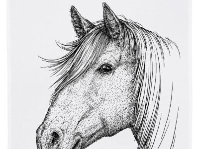 Geschirrtuch weiß Pferd grau Geschirrtuch Bauernhof