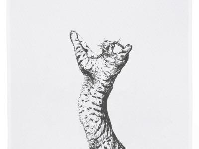 Geschirrtuch weiß Katze grau Geschirrtuch Bauernhof