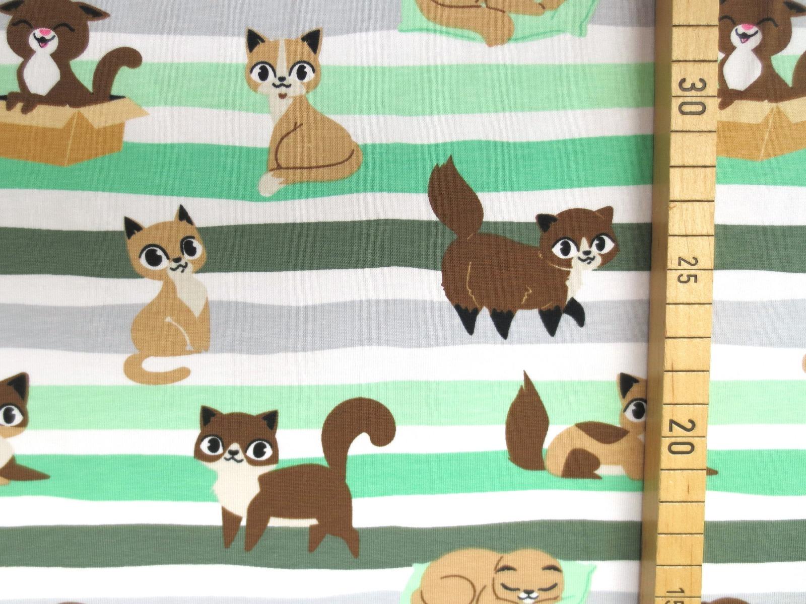 Jersey Katzen - geringelt