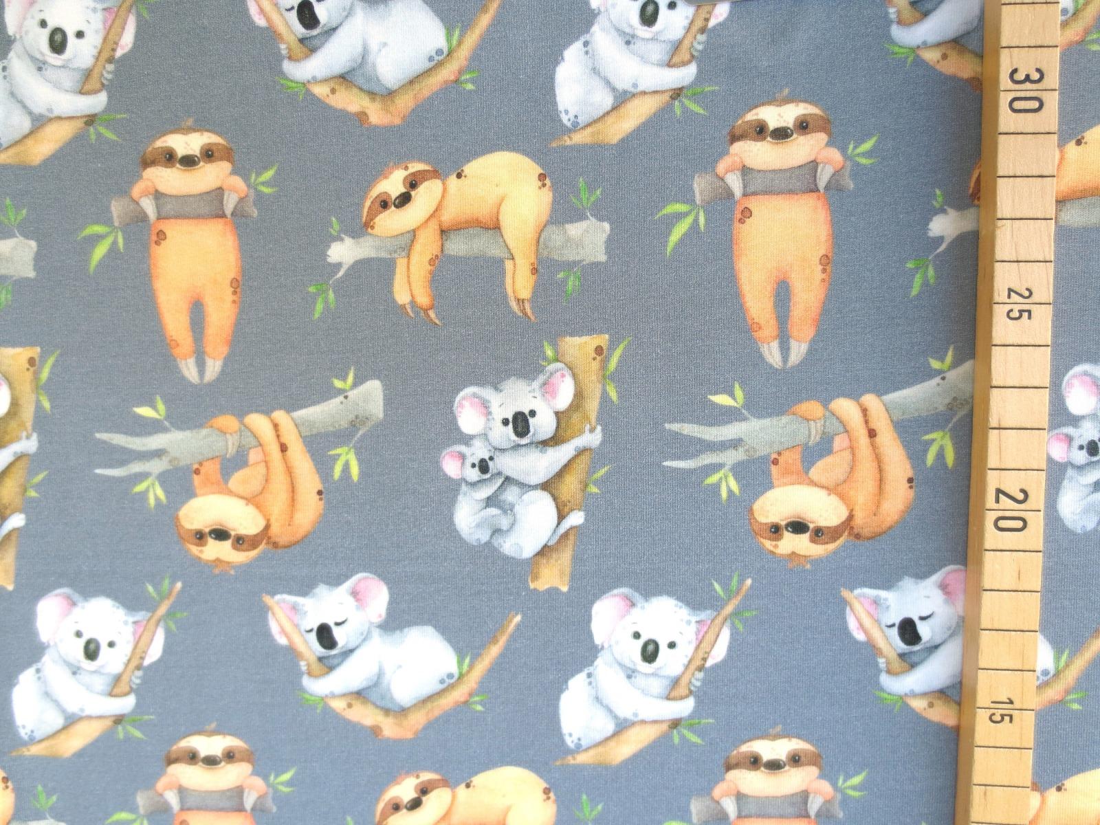 Jersey Faultier - Koala 2