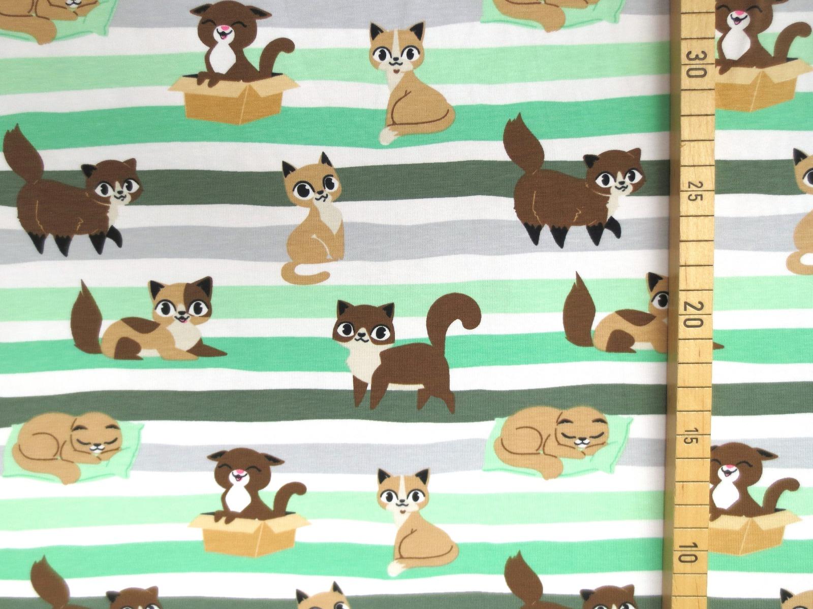 Jersey Katzen - geringelt 2