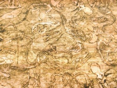 Stoff Dino Ausgrabung Baumwolle sandfarben Skelette