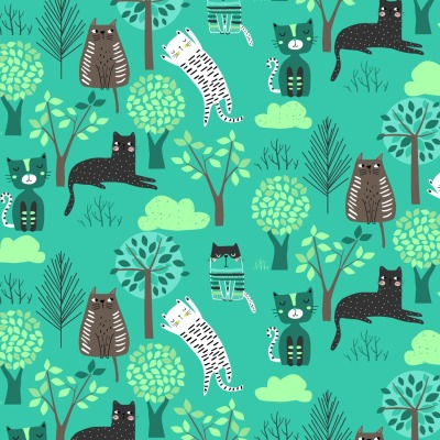 Jersey Katze Blaubeerstern Miau in petrol