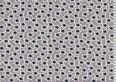 60288 Jersey Jacquard Sterne Sars blau navy chic